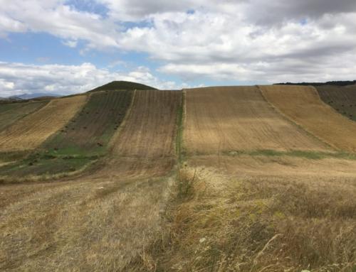 Trekking in Sicilia: Magna Via Francigena