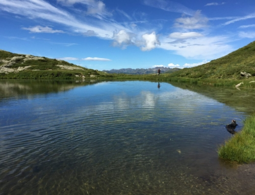 Escursione ai laghetti alpini, Lagorai